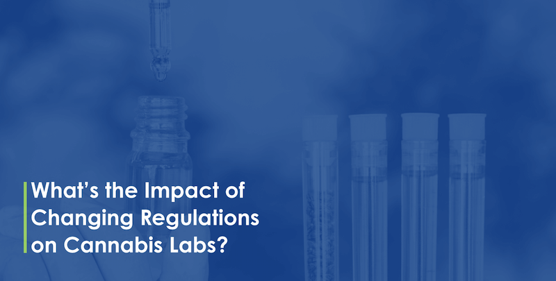 Whats the Impact of Changing Regulations on Cannabis Labs